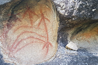 Rock Art Tours